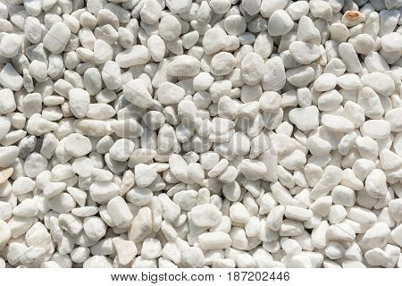 Natural White Round Pebble Stone