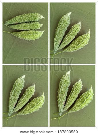 Green Momordica Or Karela isolated on Green Background