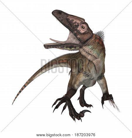 3D Rendering Dinosaur Utahraptor On White