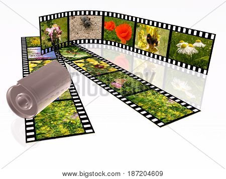 Film roll with color pictures (nature) on white background 3D illustration.