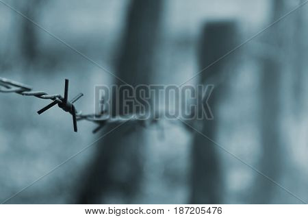 Macro Shot Of An Element Of Old And Rusty Barbed Wire With A Blurred Background. Fragment Of A Villa