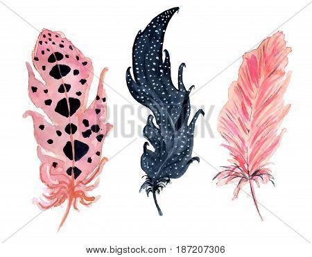 Set with hand painted watercolor pink black and purple feathers