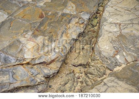 Saltwater rocky texture on flat foreshore rock platform formation