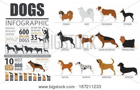 Pet Breeds Dog_7.eps