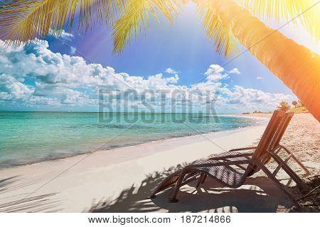 Tropical white sandy beach. Punta Cana, Dominican Republic