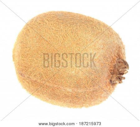 image of one  raw kiwi at day