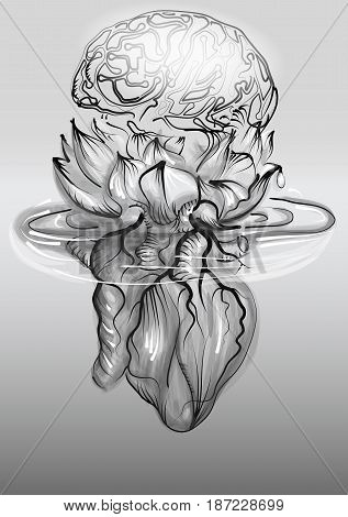 Human heart and brain in lotus flower