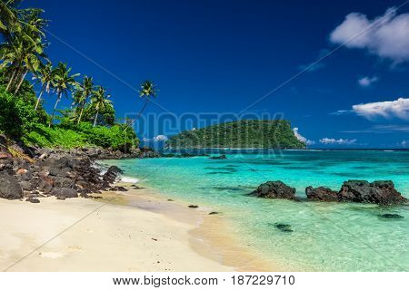 Vibrant tropical Lalomanu beach on Samoa Island with coconut palm trees and black rocks