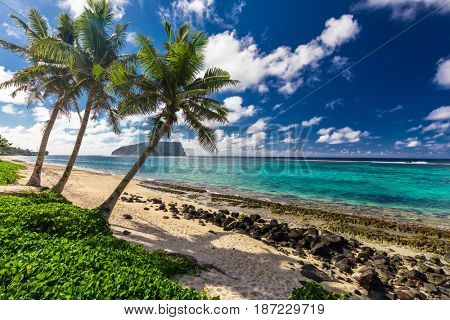 Tropical Lalomanu beach on Samoa Island with coconut palm trees, South Pacific