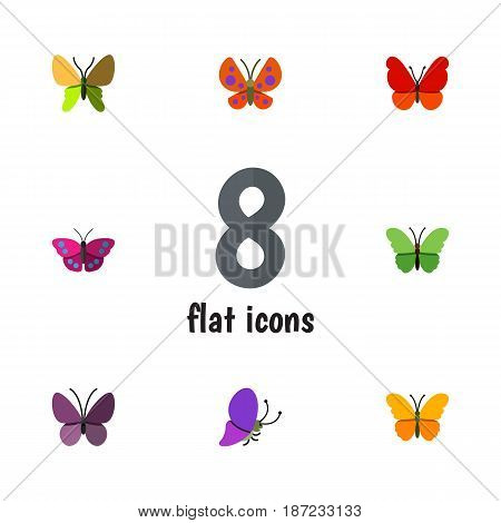 Flat Moth Set Of Archippus, Violet Wing, Summer Insect And Other Vector Objects. Also Includes Summer, Butterfly, Monarch Elements.