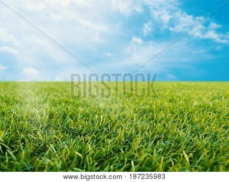 Green Grass On Blue Sky Background