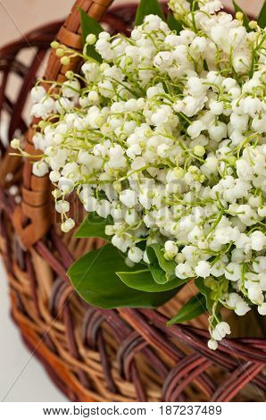 close-up view of Bouquet of lilies of the valley in a basket