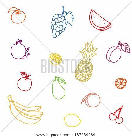 A set of fruit on a white background. The vector picture painted by a brush. Contour of a water-melon, apple, peach, plum, pomegranate, lemon, tangerine, grapes, pear, pineapple, banana, cherry