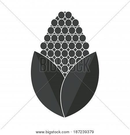 corn bioful alternative energy ethanol pictogram vector illustration