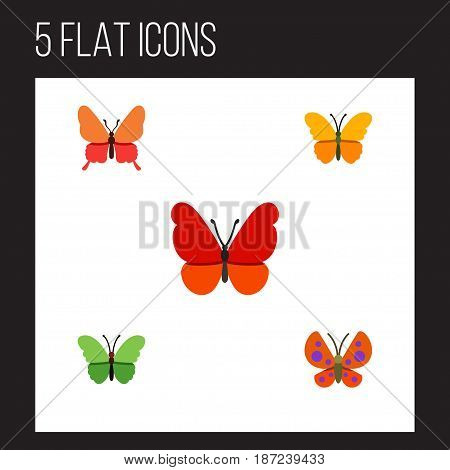 Flat Moth Set Of Milkweed, Butterfly, Monarch And Other Vector Objects. Also Includes Milkweed, Moth, Butterfly Elements.