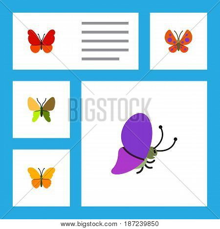 Flat Butterfly Set Of Monarch, Summer Insect, Butterfly And Other Vector Objects. Also Includes Monarch, Moth, Butterfly Elements.
