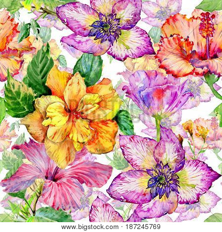 Wildflower hibiscus flower pattern  in a watercolor style isolated. Aquarelle wild flower for background, texture, wrapper pattern, frame or border.