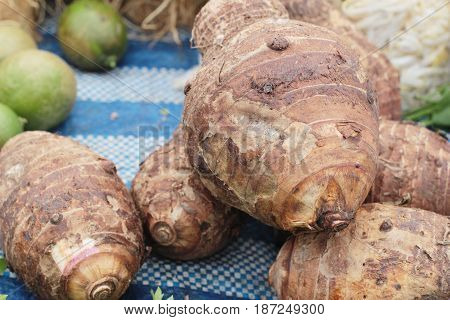 fresh taro for cooking in the market