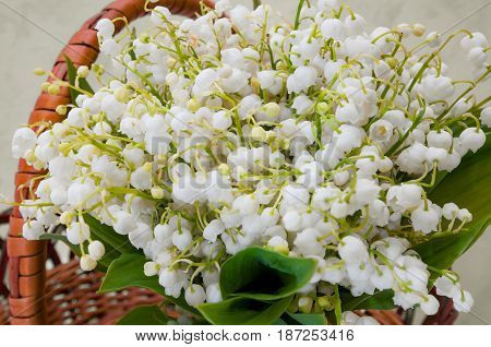 The Spring Bouquet Lilies of Valley Basket
