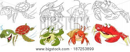 Cartoon animals set. Collection of arthropods and creeping reptilians. Turtle (tortoise terrapin) hermit crab lobster crayfish crawfish. Coloring book pages for kids.