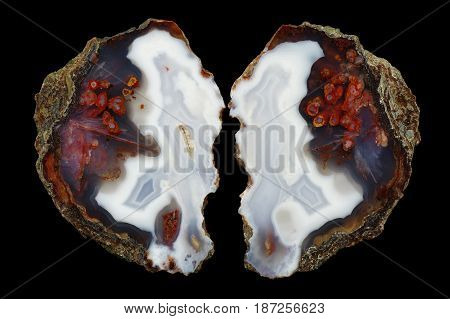 A cross section of the eyelet agate stone. Numerous pseudomorphs after dissolved minerals and multicolored silica rings colored with metal oxides are visible. Origin: Asni Atlas Mountains Morocco.