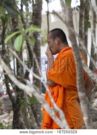 Cambodian Monk Thinking