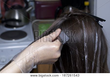 An Individual Entrepreneur Provides Services At Home. The Hairdresser Paints The Hair Of A Woman. Co