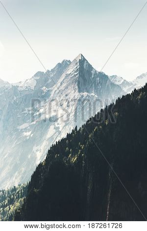 Rocky Mountains peak and forest Landscape Summer Travel wild nature scenery aerial view