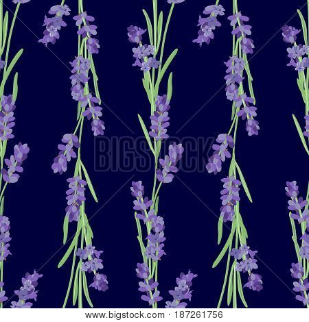 Seamless pattern with lavender flowers. Bright vector seamless background with sprigs of lavender.