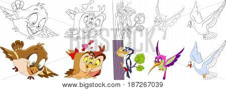 Cartoon animals set. Collection of birds. Sparrow owls in love on Valentines Day woodpecker hummingbird (colibri) pigeon (dove). Coloring book pages for kids.