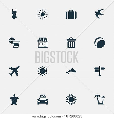 Vector Illustration Set Of Simple Beach Icons. Elements Crossroad, Beverage, Swallow And Other Synonyms Mammalian, Direction And Baggage.