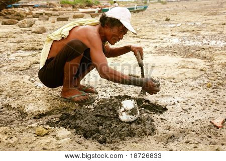 poor men collecting shell