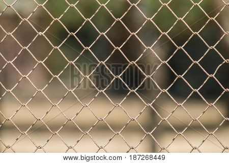 Reticulated rusty fence / metal mesh / mesh netting
