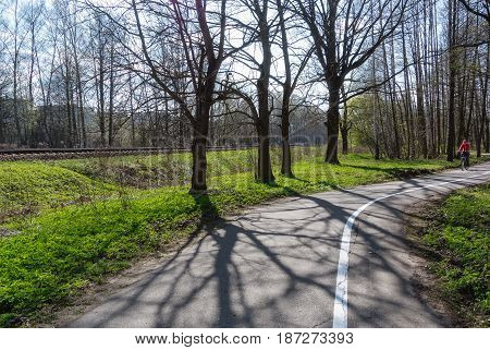 Riga bicycle path through the park in the direction of Jurmala