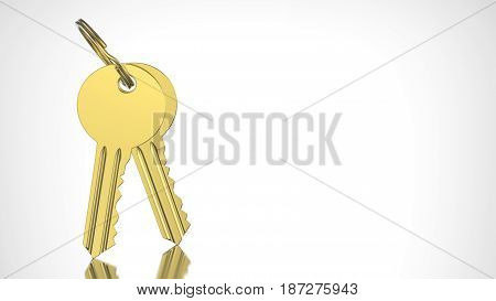 3D illustration gold and key with keychain on a grey background