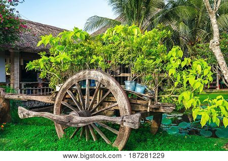 Vintage decorative wagon in the garden covered with green plants landscaping near a lake.