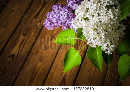 Still-life with a bouquet of lilacs close-up