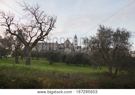 Italy Florence - December 24 2016: the view of the Florence Charterhouse church and green grass and trees on foreground Certosa di Galluzzo di Firenze on December 24 2016 in Florence Tuscany Italy.