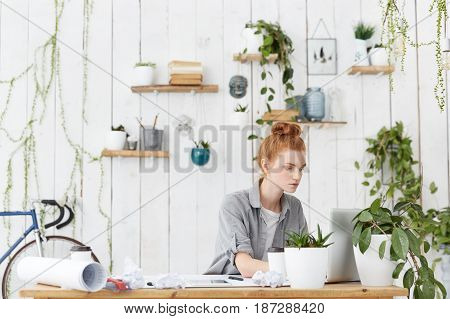 Serious Woman Freelance Architect Sitting In Front Of Open Laptop Computer Pc, Making Drawings Using