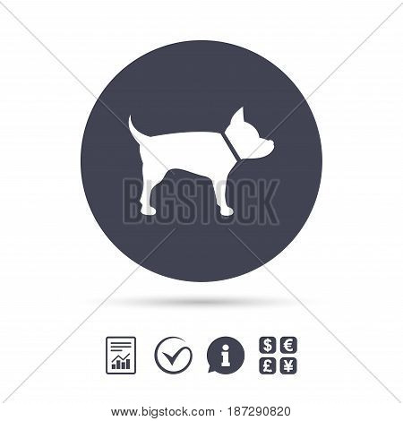 Dog sign icon. Pets symbol. Report document, information and check tick icons. Currency exchange. Vector