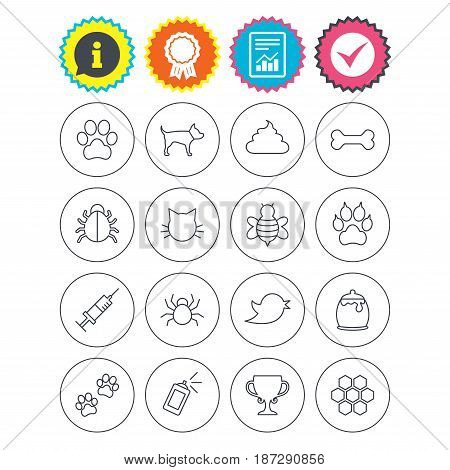 Report, information and award signs. Pets and Insects icons. Dog paw. Cat paw with clutches. Bone, feces excrement and vaccination. Honey, bee and honey comb. Check tick symbol. Flat buttons. Vector