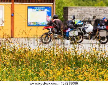 Yellow Flowers And Motorcycles On Rest Place
