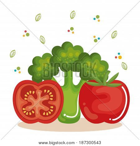 Tomato and broccoli over white background with hand drawn leaves. Vector illustration.