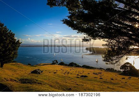 A picture of a New-Zealand island with a few sailboats on the ocean, accompanied by a late-afternoon sunset.