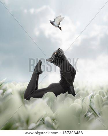 Photo manipulation includes several elements showing the head of a cute cat imposed on a woman's body in a natural landscape