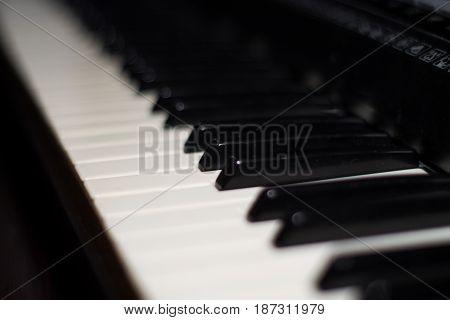 Piano keys. Close up of piano keyboard.