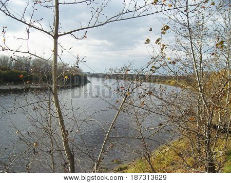 River and tree branches. Cloudy sky, autumn.