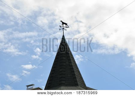 Weather Vane On The Roof Of The House
