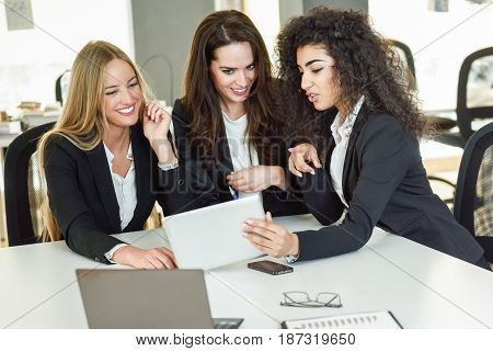 Three businesswomen working together in a modern office with white furniture. Teamwork concept. Caucasian blonde and muslim girls wearing suit. Multi-ethnic group of women
