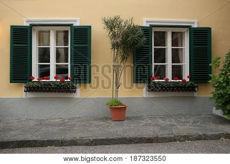 a typical austrian window with green louvered shuters and square paned windows with flowers in hanging flower pots.